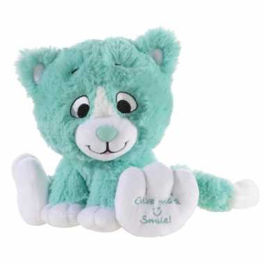 Mintgroene knuffel kat/poes give me a smile 14 cm
