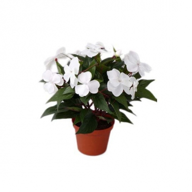 Namaak wit vlijtig liesje plantje 25 cm