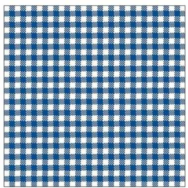 Oktoberfest - 20x geruite blauw/witte servetten 33 x 33 cm
