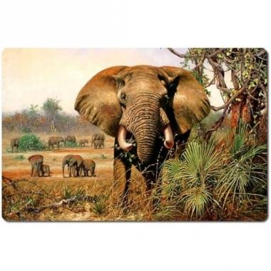 Olifant placemat 40 cm