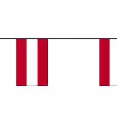 Oostenrijkse feest vlaggetjes