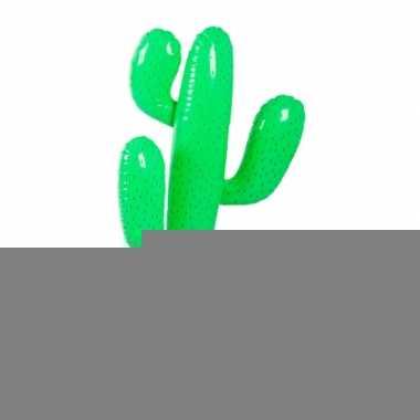 Opblaasbare cactus 85 cm