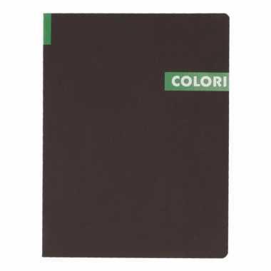 Opschrijfboek b5 96 groene vellen met lijntjes trend