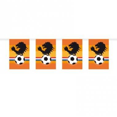 Oranje voetbal slinger leeuw 10 m