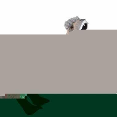 Pluche dinosaurus velociraptor knuffel 30 cm trend