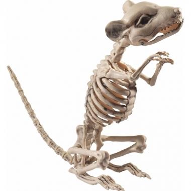 Rat/muis skelet decoratiebeeldje 33 cm