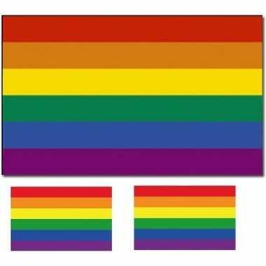 Regenboog vlag 90 x 150 cm met twee gratis regenboog stickers