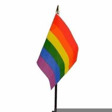 Regenboog vlaggetje met stokje