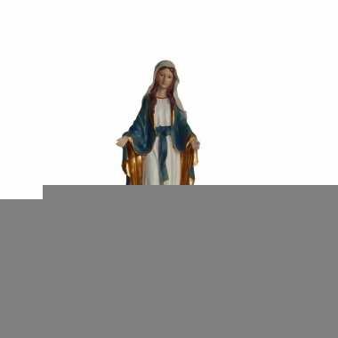 Religieus icoon maagd maria beeld 22 cm