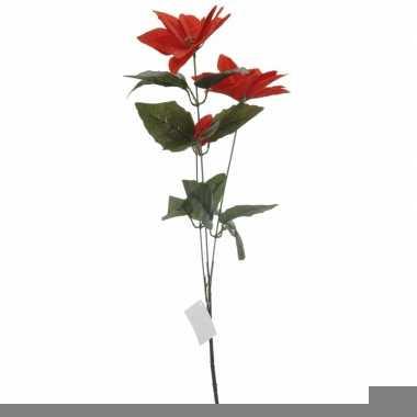 Rode kerstster bloem 66 cm