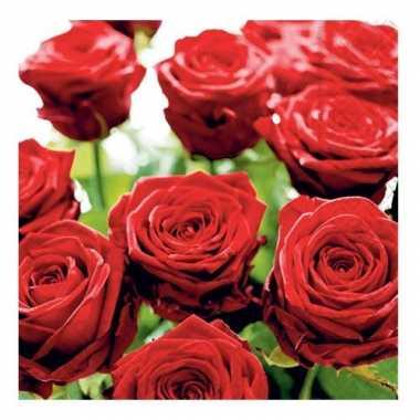 Rode rozen servetten 33 x 33 cm