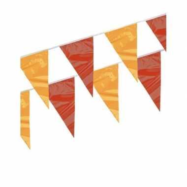 Rood en geel vlaggenlijnen 4 meter