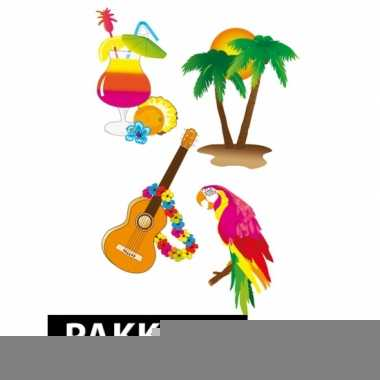 Samengesteld pakket hawaii feest klein