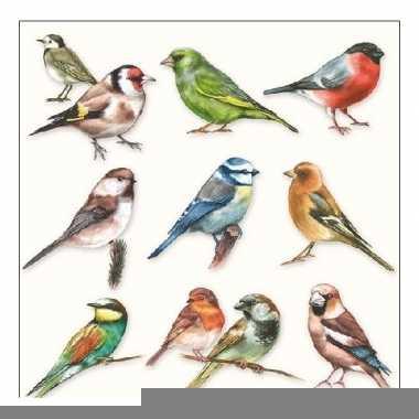 Servetten vogel thema 3-laags 20 stuks