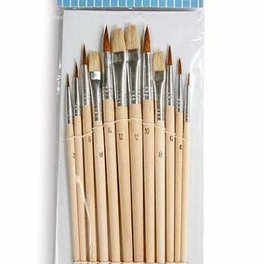 Set penselen met 12 stuks