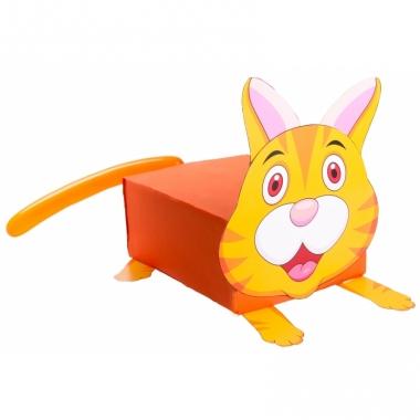Sinterklaas kat suprise bouwpakket