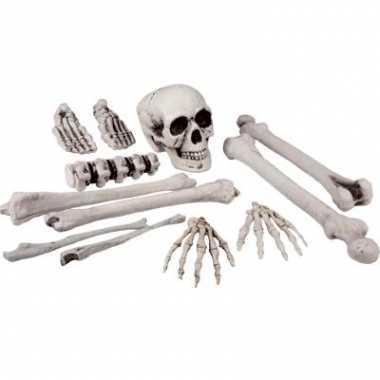 Skelet delen in zak 12 stuks