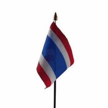 Thailand vlaggetje met stokje