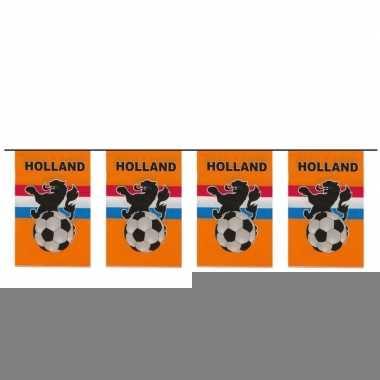 Thema oranje voetbal vlaggenlijn 10 meter