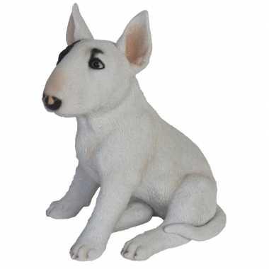 Tuinbeeld bull terrier hond 34 cm