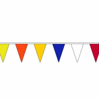 Vlaggenlijn in kleur 13 meter