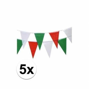Vlaggenlijntje groen/rood/wit 4 m 5x