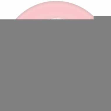 Wegwerp bordjes roze met hartje