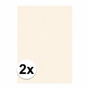 Wiskunde blok 1 millimeter 2 stuks
