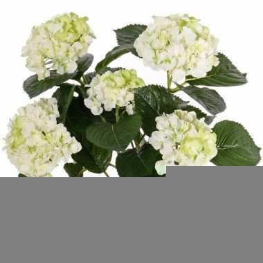 Wit/groene hortensia kunstplant 36 cm