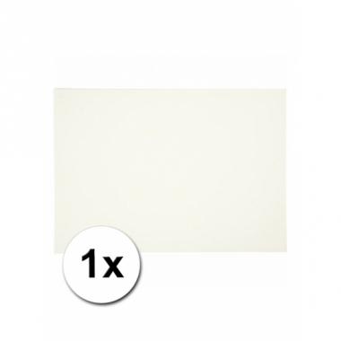 Wit knutselpapier a4 formaat