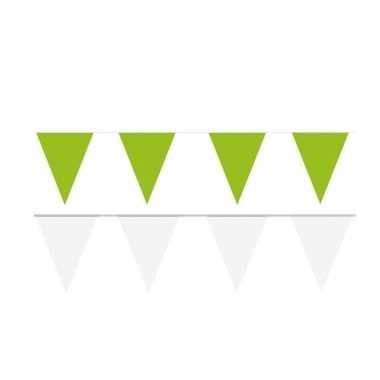 Witte/groene feest punt vlaggetjes pakket 120 meter