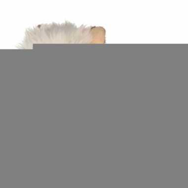 Witte terrier knuffel hond 25 cm