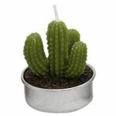 Woondecoratie cactus kaarsje groen type 2