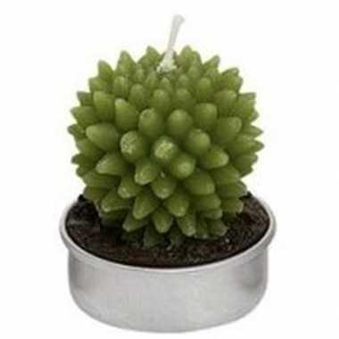Woondecoratie cactus kaarsje groen type 3