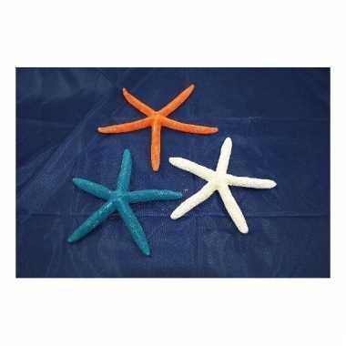 Woondecoratie zeester blauw 17 cm