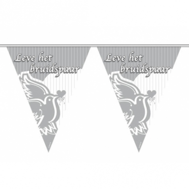 Zilver bruiloft thema vlaggenlijn