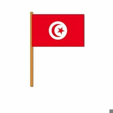 Zwaaivlaggetjes tunesie