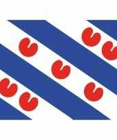 10x friesland vlag stickers 7 5 x 10 cm trend