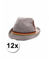 12 grijze tiroler hoedjes trend