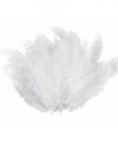 12 lange witte veren trend