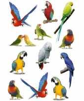 12x papegaaien vogels dieren stickers 3d effect trend