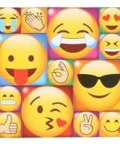 13x emoji smiley memo magneten type 2 trend
