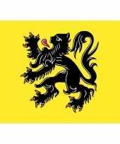 15x vlaanderen vlag stickers 7 5 x 10 cm trend
