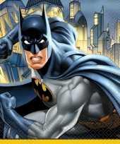 16x batman themafeest servetten 33 x 33 cm trend