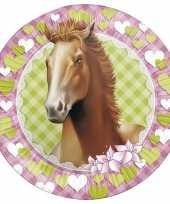 16x paarden themafeest wegwerpbordjes 23 cm trend