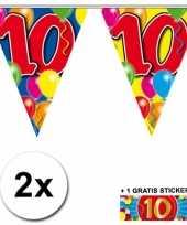 2 gekleurde vlaggenlijnen 10 jaar met sticker trend