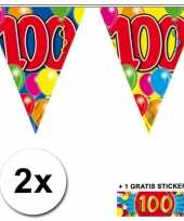 2 gekleurde vlaggenlijnen 100 jaar met sticker trend