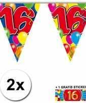 2 gekleurde vlaggenlijnen 16 jaar met sticker trend