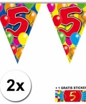 2 gekleurde vlaggenlijnen 5 jaar met sticker trend