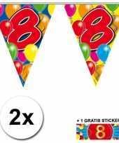 2 gekleurde vlaggenlijnen 8 jaar met sticker trend